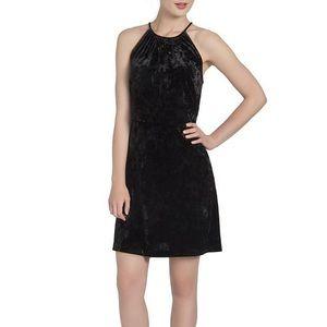 NWT Lysse Willa Crushed Velvet Halter Mini Dress